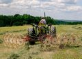 Star-wheel hay rake.jpg